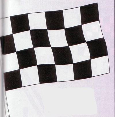 NABCO Antenna Pennants and Fringe: Cloth Checker Flag-4 Mil Poly(Dozen)